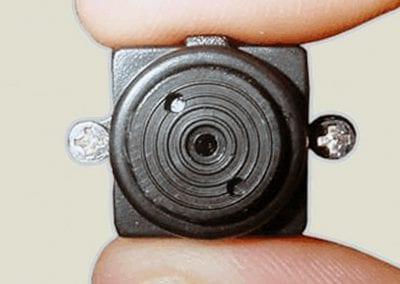 Microspia
