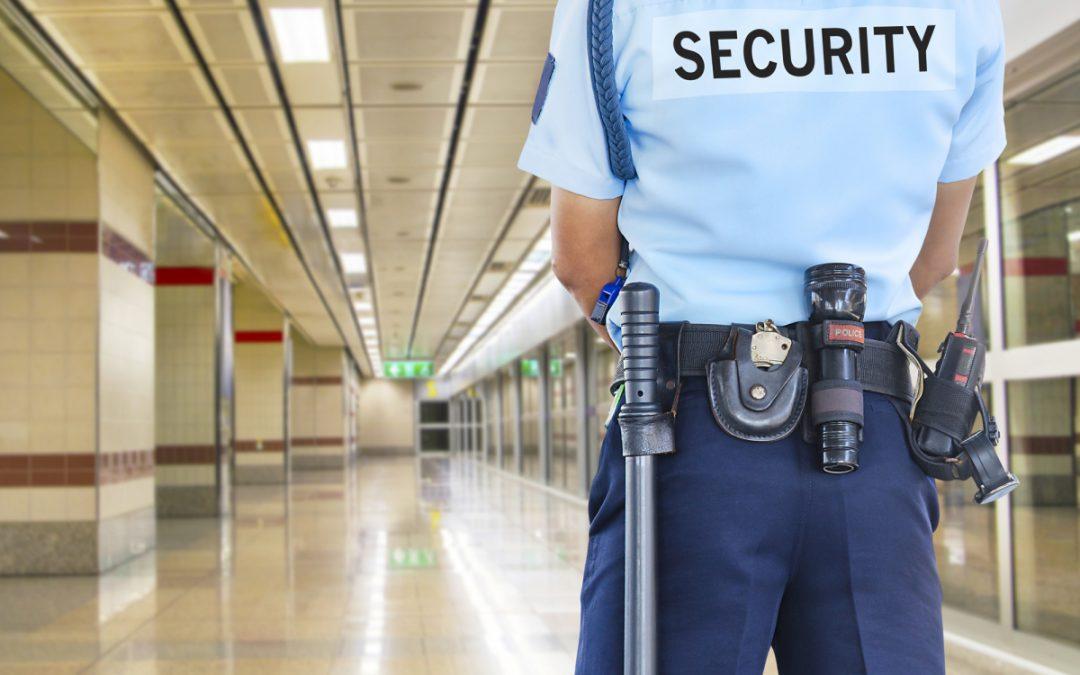 Dal Ministero dell'Interno grande INNOVAZIONE: La Guardia Giurata è anche un Professionista autonomo.